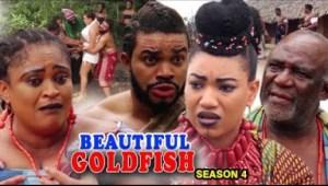 Beautiful Goldfish Season 4 - 2019